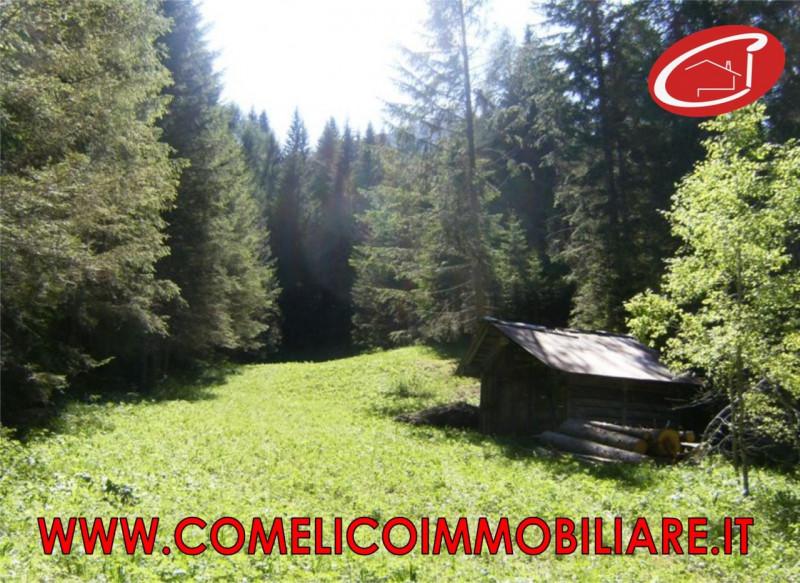 Rustico vendita COMELICO SUPERIORE (BL) - 99 LOCALI - 25 MQ