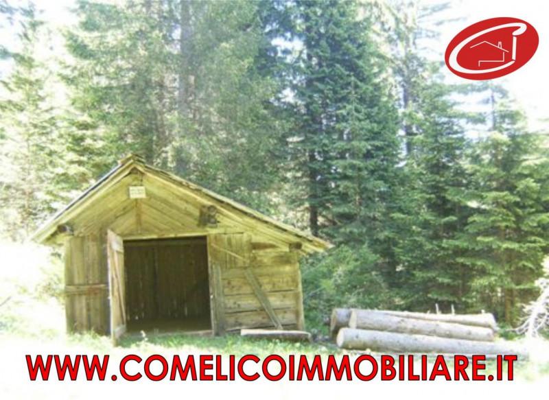 Rustico vendita COMELICO SUPERIORE (BL) - 25 MQ - foto 4