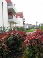 vendesi nuovo appartamento su residence 2 camere 2 bagni Selvazzano San Domenico