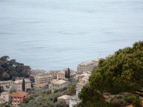 Appartamento in Vendita a Camogli: 3 locali, 80 mq