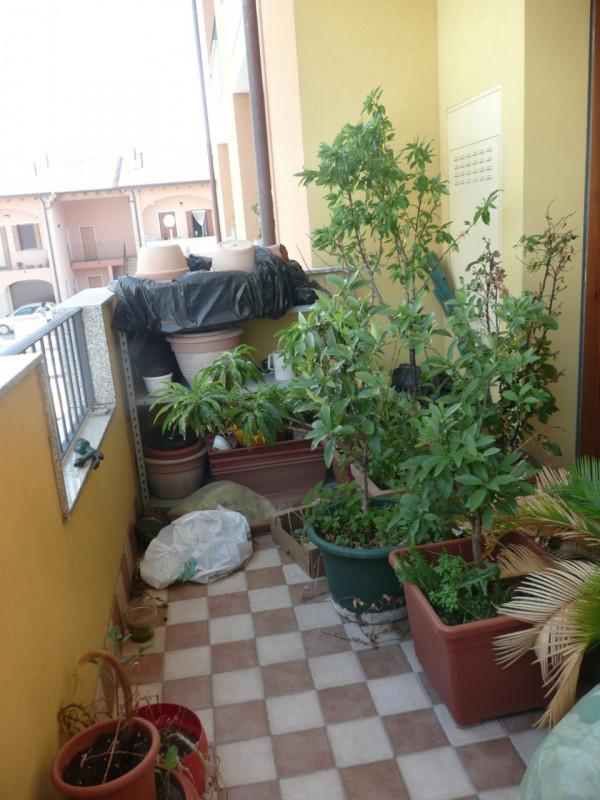 Bilocale Campolongo Maggiore  13