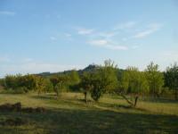 villa in vendita Frassinello Monferrato foto p1090387.jpg