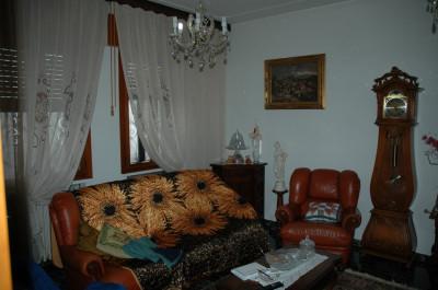 Grande casa singola a Due Carrare, con ampio giardino doppio garage e Taverna