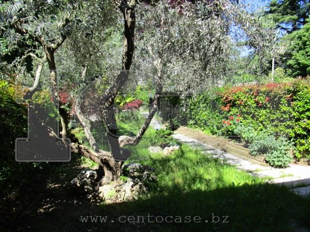 Costermano, trilocale con giardino, locato