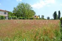 terreno in vendita San Pietro Viminario foto 002__dsc_0056.jpg