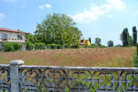 terreno in vendita San Pietro Viminario foto 003__dsc_0057.jpg