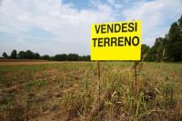 terreno in vendita Nanto foto terreno_vendesi.jpg
