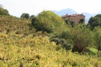 villa in vendita Villaga foto 049__villagavilla_26.jpg