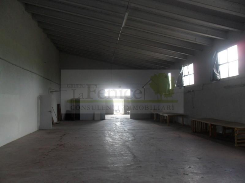 CASALOLDO:CAPANNONE - https://media.gestionaleimmobiliare.it/foto/annunci/160617/1387121/800x800/sam_1812.jpg