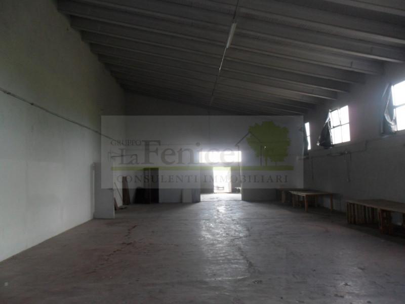 CASALOLDO:CAPANNONE - https://media.gestionaleimmobiliare.it/foto/annunci/160617/1387121/800x800/sam_1813.jpg