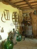 Rustico, agriturismo con terreno in vendita nel comune di montopoli in val d'arno