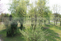 casa singola in vendita Abano Terme foto 004__05_giardinocasasingolaabanoterrme.jpg