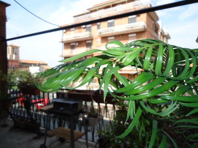 Appartamento in buone condizioni arredato in vendita Rif. 4105112