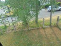 casa singola in vendita Guarda Veneta foto 000__dsc03483.jpg