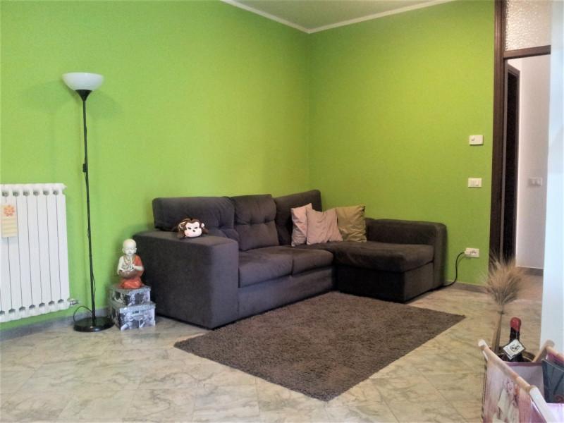 Appartamento in ottime condizioni arredato cercasi Rif. 11673624