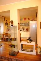 appartamento in vendita Vicenza foto 006__dsc_0522.jpg