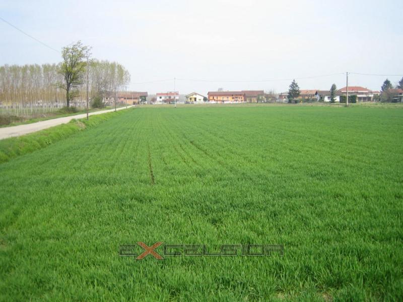 Terreno in vendita Rif. 5930495