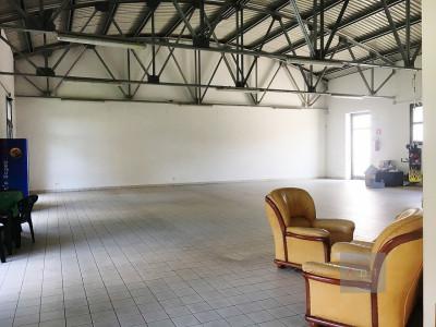 Villa del Conte (PD) affittasi immobile ad uso commerciale in centro paese.