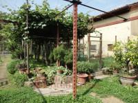 trifamiliare in vendita Vicenza foto 004__5.jpg