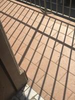 appartamento in affitto Trecenta foto 005__img_8251.jpg