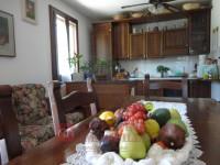 villa in vendita Vicenza foto 000__dsc05691.jpg