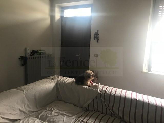 CASTEL GOFFREDO  RUSTICO INDIPENDENTE - https://media.gestionaleimmobiliare.it/foto/annunci/180918/1842219/800x800/001__img_5667_wmk_0.jpg