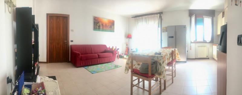 Bilocale in buone condizioni in affitto Rif. 8729645