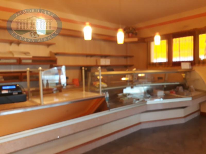 Casa Indipendente in vendita Rif. 9678885