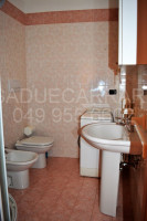 appartamento in affitto Monselice foto 008__bagno-con-doccia.jpg