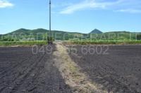 terreno in vendita Arquà Petrarca foto 006__dsc_0111.jpg