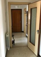 appartamento in vendita Villanova Marchesana foto 003__zona_notte.jpg