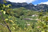 Nuovo trilocale con terrazzo e giardino con bella vista sulla valle