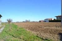 terreno in vendita Maserà di Padova foto 004__Masera_terreno_edificabile_lato_strada.jpg