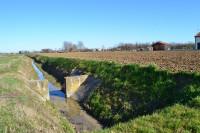 terreno in vendita Maserà di Padova foto 007__Masera_terreno_edificabile_dettaglio_corso-acqua.jpg
