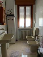casa singola in vendita Masi foto 017__img_5193.jpg