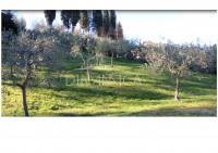 Villino di recente costruzione con splendido parco a san miniato basso