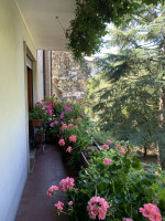 appartamento in vendita Padova foto 003__a58cd217-3bd5-4a45-8bad-0b3bb11286c2.jpg
